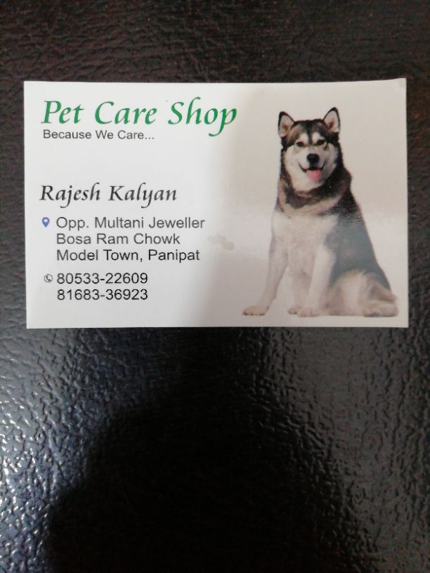 PET CARE SHOP