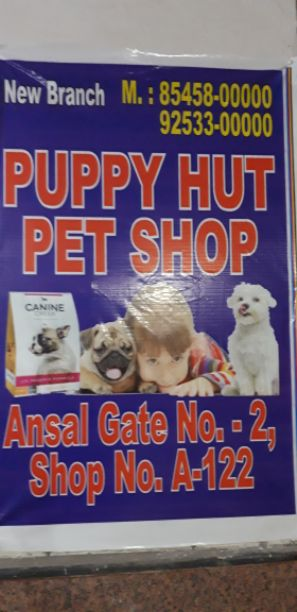 Puppy Hut Pet Shop