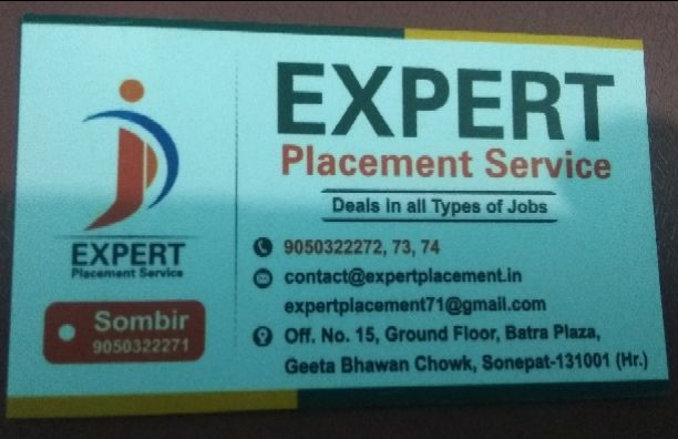 Expert Placement Service