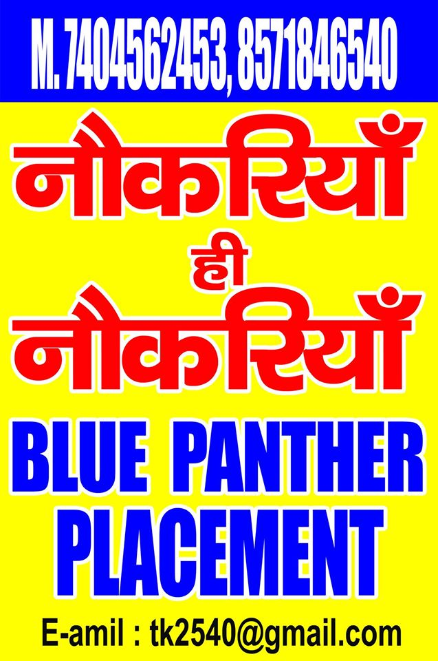 Blue Panther Placement Services